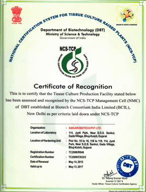 DEPARTMENT OF BIOTECHNOLOGY NATIONAL CERTIFICATION SYSTEM FOR TISSUE CULTURE RAISED PLANTS-ffc24b4a